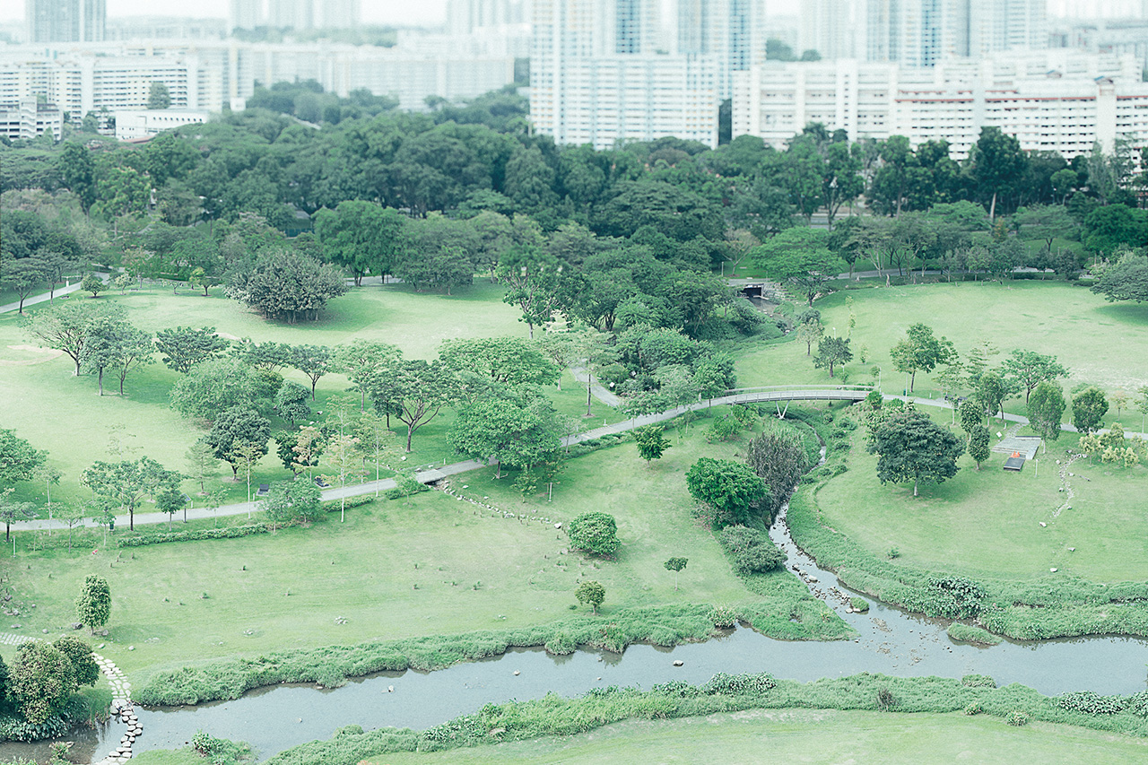 """Does Singapore Have """"No More Free Space""""? Or Are We Just Not Allowed to Use Space Freely?"""